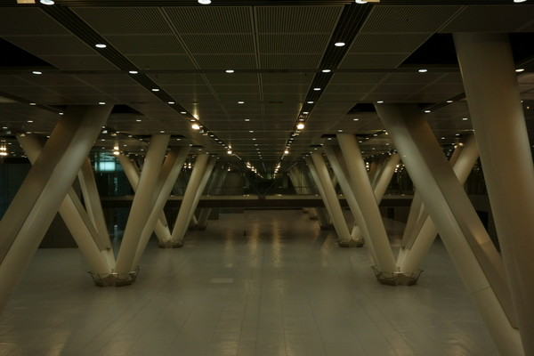 0816東京フォーラム.JPG