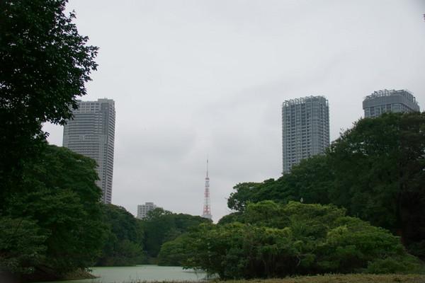 1001東京タワー.JPG