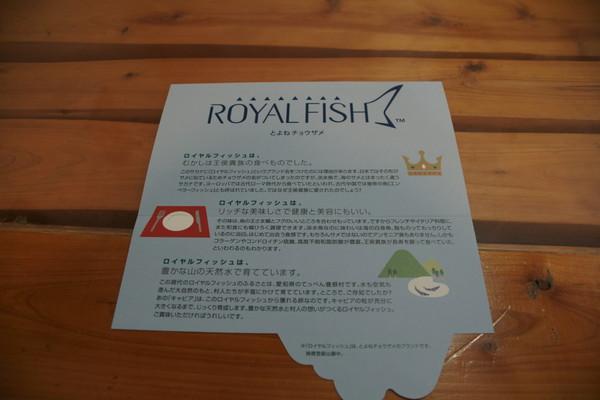 1113ROYYAL FISH.JPG