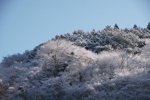 0311雪1.JPG