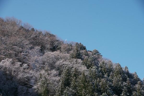 0311雪2.JPG